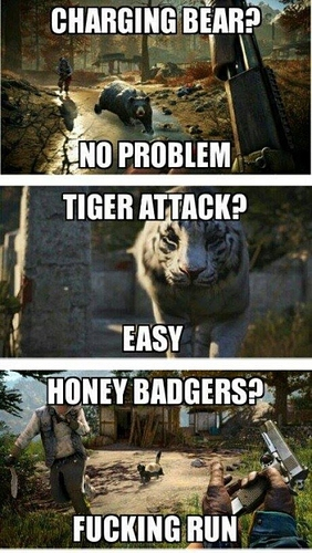 Far Cry 4 honey badgers